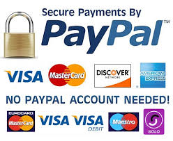 pay for your same day courier paypal logo